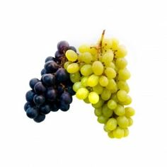 Health Benefits of Grapes and Grape Juice