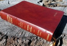 Study Bibles (Bibles rebound by Ace Bookbinding Co. Book Rebinding, Master Studies, Bible Art, Rebounding, Study, Lettering, Check, Christ Cross, Studio