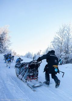 Back on the Yukon Quest Trail after leaving Pelly's Crossing. 200+ miles to the finish line.