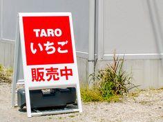 TARO様 A型看板|COLORS(カラーズ)|山口県岩国市 広告、グラフィックデザイン、Webデザイン制作