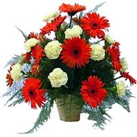 Catch the Music Online Flower Shop, Flowers Online, Cake Online, Online Gifts, Order Flowers, Feeling Special, Anniversary Gifts, Floral Wreath, Bouquet