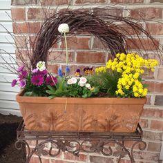 Beautiful spring flower box
