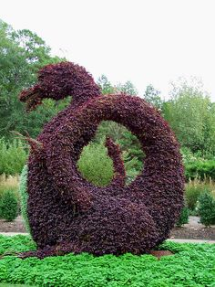 garden dragon.... I want one!  :D