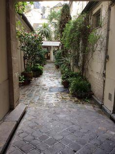 Terrace, Patio, House Porch, Terraces, Deck, Deck, Courtyards