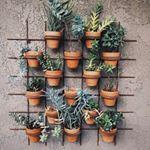 Quanto mais verde melhor! #horta #hortaemcasa #decora #sustentabilidade #arquitetura #garden #gardening #diy