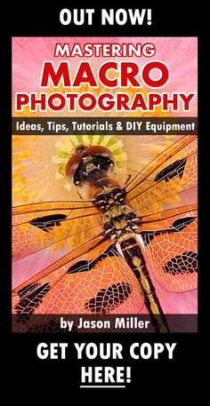 It's no secret that lots of casual photographers get bitten by the macro photography bug the very first time they see a dazzling, extreme close-up shot of flowers. Even though you can take macro photographs using virtually anything as your subject of...