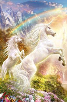 Two unicorn and beautiful rainbow Unicorn And Fairies, Unicorn Fantasy, Unicorns And Mermaids, Unicorn Horse, Unicorn Art, Mystical Animals, Mythical Creatures Art, Fantasy Creatures, Beautiful Unicorn