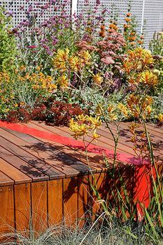 BurnleyLivingRoofs_HASSELL_07_PeterBennetts « Landscape Architecture Works   Landezine