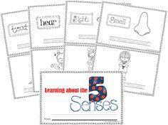 5 Senses Mini book for kids