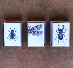NEW in store: Twine  Co. letterpress cards. Artisan-made in the USA. Set of 6 for $22.