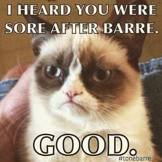 Grumpy cat frowns on your shenanigans. Grumpy cat is not impressed. I wonder if grumpy cat is an engineer. I did find some Grumpy Cat gifs: Grumpy Cat say \ Grumpy Cat Quotes, Funny Grumpy Cat Memes, Funny Memes, Funny Quotes, Grumpy Kitty, Memes Humor, Pet Memes, Funny Cartoons, Funny Pranks