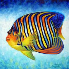 """""""Royal Angelfish"""" by Nancy Tilles: This is an oil painting portrait of the Royal Angel Fish on a painterly blue background. The fish I painted has beautiful blue and yellow/orange stripes. The Royal Angelfish is a shy fish that can ..."""
