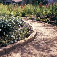 Affordable garden path idea, this one is the gravel path.  Instead of an expensive, labor-intensive formal path, save money and time with one of these casual paths. They'll blend in better, and will look like they've been in your garden forever.