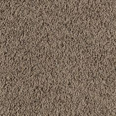 SmartStrand Bartley Mellow Taupe Frieze Indoor Carpet - carpet all areas except kitchen, dining room, bathrooms and entryway