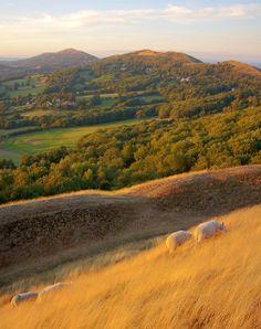 Malvern Hills, Herefordshire, England