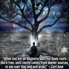 When you are up against a wall, put down roots like a tree, until clarity comes from deeper sources to see over that wall and grow. Carl Jung Frases, Carl Jung Quotes, Wisdom Quotes, Life Quotes, Ispirational Quotes, Humanistic Psychology, Spiritual Path, Spiritual Growth, Spiritual Quotes