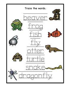 Pond Printable ~ Preschool Printables