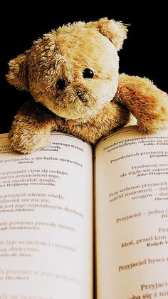 Teddy, Zabawka, Zwierząt, Szczęśliwy, Ładny, Książka