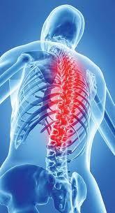 Fyzioterapie - Hledat Googlem