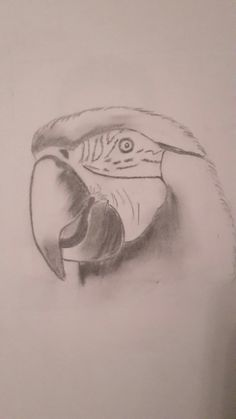 Drawings, Art, Sketch, Kunst, Portrait, Drawing, Resim, Paintings, Doodle