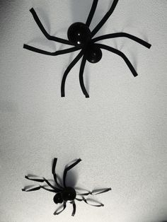 Balloon and Streamer Spiders