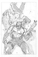 Punisher and Spidey