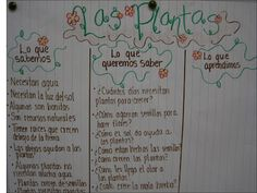 K-W-L chart from Dual Language Second Grade Class