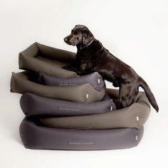 Schöne Accessoires für Vierbeiner, die nicht nur Hund, sondern auch Herrchen oder Frauchen erfreuen | creme guides