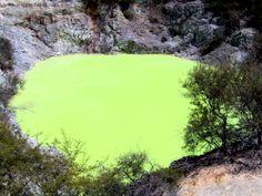 Nouvelle Zélande, Wai-O-Tapu, une zone mouvementée par le volcanisme sous-jacent. www.plantesdusud.com
