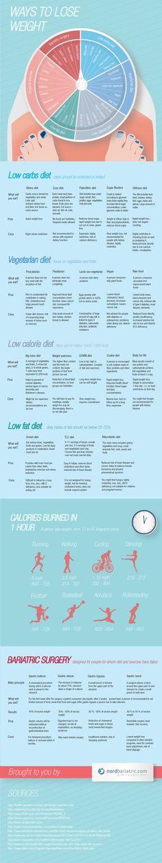 best online weight loss program free 2013