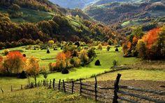 Zlatibor, Serbia #landscape #forest #nature