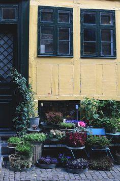 Köpenhamn-arkiv - Helena Lyth