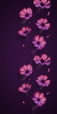 Trendy Flowers Wallpaper For Phone Backgrounds Mobiles Ideas Flower Iphone Wallpaper, Flower Background Wallpaper, Purple Wallpaper, Butterfly Wallpaper, Trendy Wallpaper, Cellphone Wallpaper, Colorful Wallpaper, Galaxy Wallpaper, Wallpaper Backgrounds