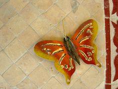 Butterfly fridge magnet