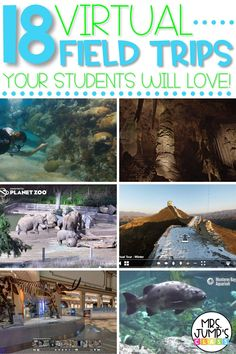 Searching for fun virtual field trip ideas for elementary students? This blog post has you covered with a list of 18 of the best virtual field trips that your students will love from virtual museum trips, to the best virtual zoo trips.