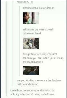 Supernatural fandom is (in)sane!!! ;)