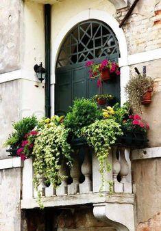 ~ Window Box for a Balcony ~ - fungardenz Balcony Window, Small Balcony Decor, Balcony Design, Balcony Ideas, Balcony Decoration, Window Planters, Balcony Flowers, Balcony Plants, Balcony Gardening