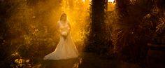 Warren's Portfolio - Portfolio Wedding Photography, Weddings, Painting, Wedding, Painting Art, Paintings, Wedding Photos, Wedding Pictures, Painted Canvas