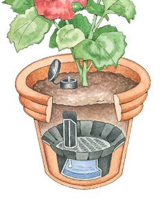 Dying to try these self-watering pot kits.  They make every potted plant self-watering!