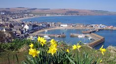 Your pictures of Scotland: 3 - 10 April - BBC News. Stonehaven Harbour.