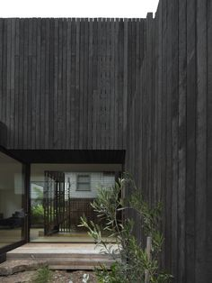 Gallery of House A by WALTER&WALTER / The Local Project