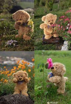 Teddy Bear Images, Teddy Bear Pictures, Teddy Hermann, Teady Bear, Beanie Bears, Diy Flower Crown, Best Birthday Wishes, Disney Phone Wallpaper, Bear Wallpaper