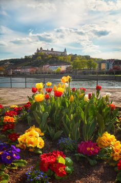 ღღ Springtime - Würzburg by Michael  Breitung on 500px