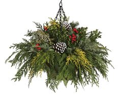 Don't forget about winter hanging baskets.also perfect for November-Spring! Christmas Hanging Baskets, Christmas Planters, Christmas Arrangements, Christmas Porch, Christmas Centerpieces, Outdoor Christmas, Xmas Decorations, Christmas Holidays, Christmas Wreaths