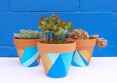 Decorating terra cotta pots in an easy way to add color to your plantings! Create something fun for your home by painting your own terra cotta pots. Painted Plant Pots, Painted Flower Pots, Geometric Painting, Geometric Decor, Diy Planters, Terracotta Pots, Clay Pots, Diy Painting, Terrarium