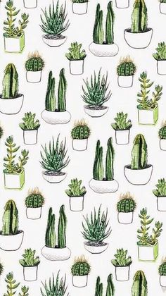 background, fondos, green, pattern, plants, sfondi, tumblr, wallpaper, First…