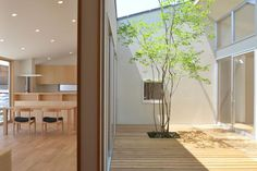 Home, Home And Garden, Atrium, Room Divider, Backyard Design, Tekton, Courtyard House, Exterior, Interior Decorating