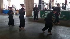Démonstration des cours enfants et adultes de Vo-co-truyen. Enchaînements de 1ère année. Grenade 28 juin 2014. http://www.laileduphoenix.com/