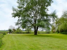 Garden and grounds | Dinckley Court and Lodge - Dinckley Court, Burcot-on-Thames, nr. Abingdon and Oxford