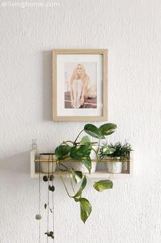 Videotutorial paso a paso para hacer un estante decorativo perfecto para llenarlo de plantas